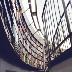 Einfluss kontinuierlichen Feedbacks: Studie der Leuphana Universität Lüneburg