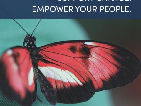 Maßnahmen – Effektives Change Management mit CompanyMood