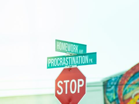 Are you still procrastinating or working?